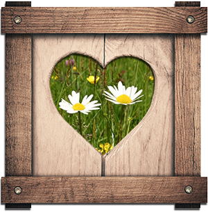 Secret Meadows heart frame with grass and flowers